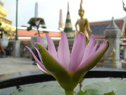 bestereisezeit-thailand