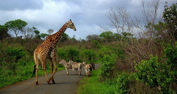 Beste Reisezeit Südafrika