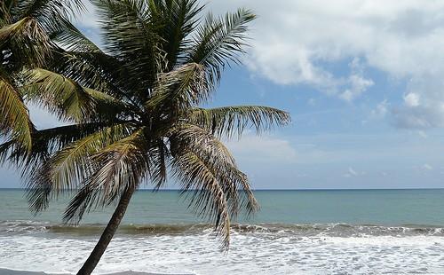 Beste Reisezeit Karibik