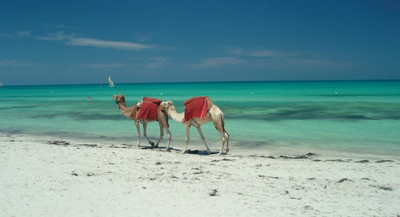 Beste Reisezeit Djerba