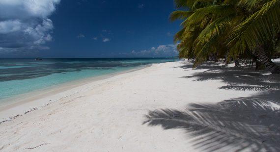 Beste Reisezeit Dominikanische Republik